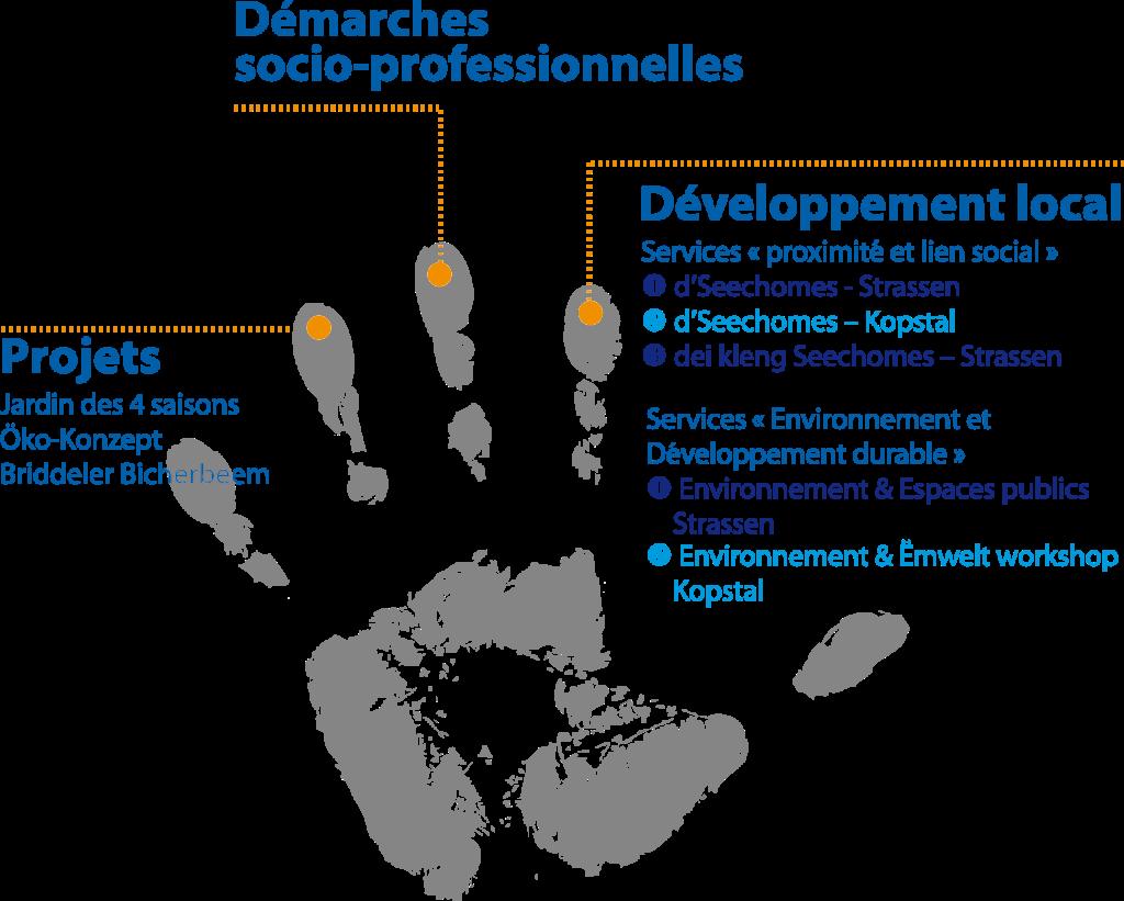 activites-developpement-local